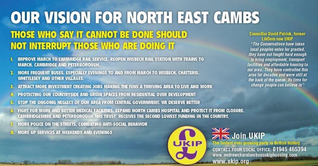 UKIP Vision